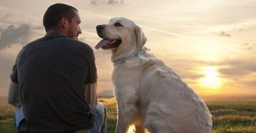 dogs-Mans-Best-Friend.jpg
